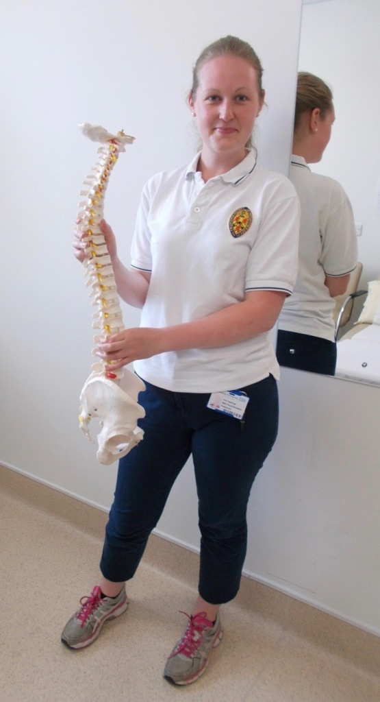 Physio holding model of spine