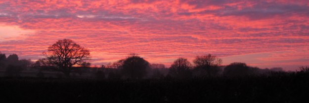 Sunset in South Somerset